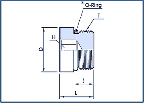Blanking Plug with O Ring