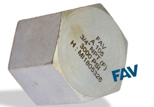 Carbon Steel Cap Female