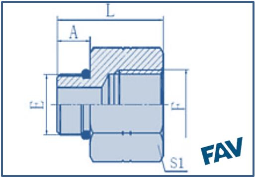 ORFS Fittings