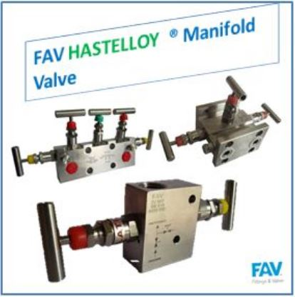 Hastelloy Manifold Valves