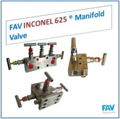 Inconel Manifold Valve