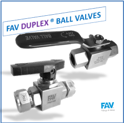 Duplex Ball Valves