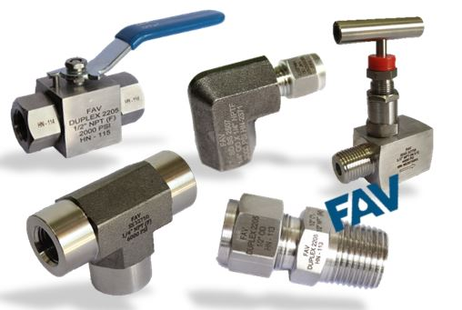 Duplex Fittings & Valves